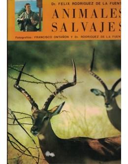 Animales Salvajes de Africa Oriental | de Felix Rodriguez de la Fuente