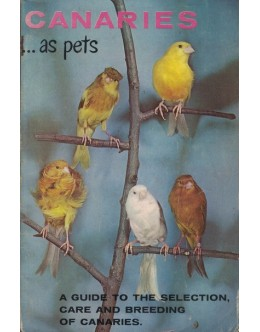 Canaries as Pets | de Evelyn Miller