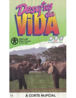 Desafios da Vida - 11 - A Corte Nupcial [VHS]