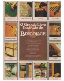 O Grande Livro Ilustrado do Bricolage   de Roland Gööck