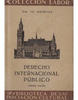 Derecho Internacional Público   de Th. Niemeyer