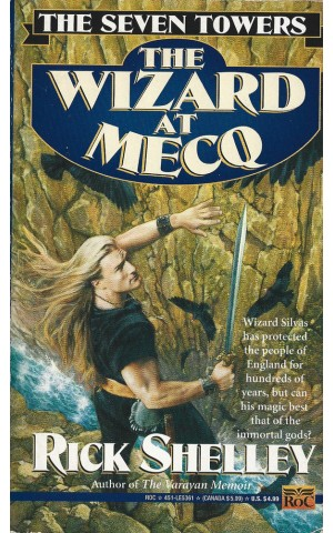 The Seven Towers: The Wizard at Mecq | de Rick Shelley