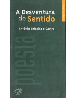 A Desventura do Sentido | de António Teixeira e Castro